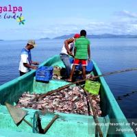 Pesca Artesanal